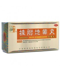 """Pills """"Golden Chest / Gui Fu Di Huang Wan"""" (Guifu Dihuang Wan)"""